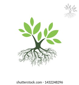 Logo Green Tree dengan Roots. Ilustrasi Vektor