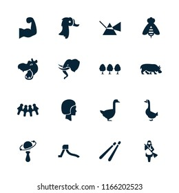 Logo icon. collection of 16 logo filled icons such as hippopotamus, goose, intersection, children, face, muscular arm, tree, elephant. editable logo icons for web and mobile.