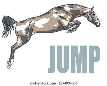 A logo of a jumping horse.