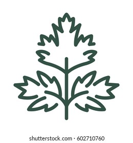 Logo or label parsley. Line style logotype. Easy to use parsley template. Vector abstract sign or emblem.
