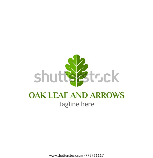 Logo Oak Leaf Arrow Vector Ecology Stock Vector (Royalty