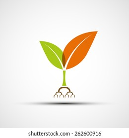 Logo plants with colorful leaves. Vector image.