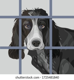 Lonely dog with sad eyes behind bars. Vector illustration isolated on dark background in realistic style
