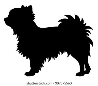 Long haired Chihuahua purebred dog standing in side view - vector silhouette isolated