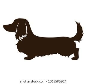 Long haired dachshund black silhouette