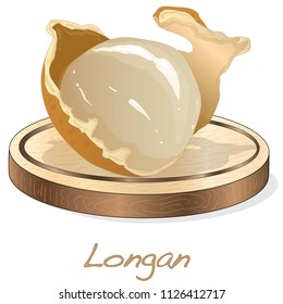 Longan, Dimocarpus longan.  Vector illustration of longan berry on the plate.