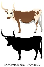 Longhorn Cow with Silhouette