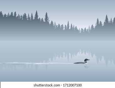 Loon crossing calm lake vector background