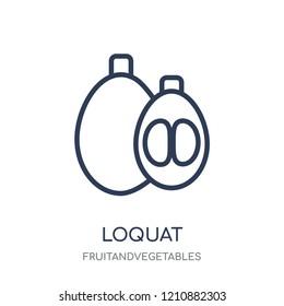 Loquat icon. Loquat linear symbol design from Fruitandvegetables collection. Simple outline element vector illustration on white background.