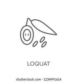 Loquat linear icon. Modern outline Loquat logo concept on white background from Fruits and vegetables collection. Suitable for use on web apps, mobile apps and print media.