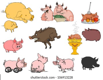 Lots of different pigs on a white background