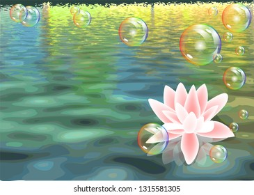 lotus and bubbles. abstract nature vector background