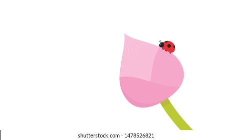 Lotus bud vector. wallpaper. free space for text. copy space. Lotus flower. ladybug vector.