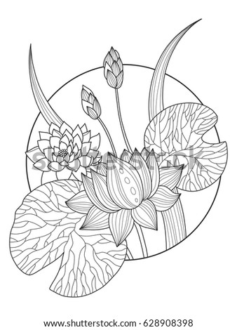 Lotus Flower Coloring Book Vector Illustration Tattoo Stencil Black And White Lines Lace