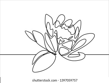 Lotus flower continuous line drawing