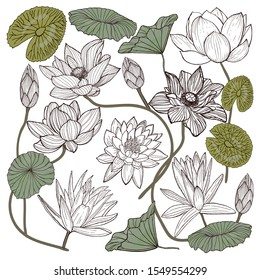 Lotus flower vector set. Hand drawn ink black outline lotus flowers and leaves isolated on white background. Asian flower for worship Buddhism.