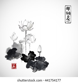 Lotus flowers hand drawn with ink isolated on white background. Contains hieroglyphs - zen, freedom, nature, beauty Traditional Japanese ink painting sumi-e