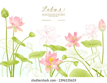 Lotus flowers.  Template for wedding invitation, greeting card, banner, gift voucher with place for text. Colored and outline design. Vector illustration.