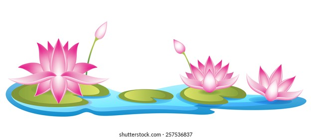 Lotuses floating on water vector illustration. Waterlily blossom banner. Waterlily pound vector elements.