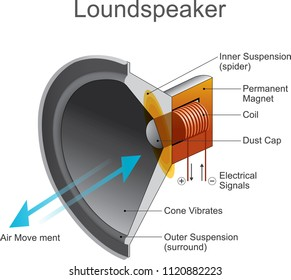 Loudspeaker or loud-speaker or speaker is an electroacoustic transducer which converts an electrical audio signal into a corresponding sound.
