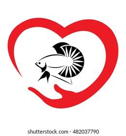 Love Betta Fish On White Background