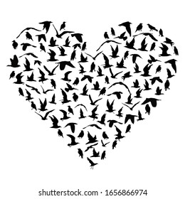 I love birds concept with silhouettes of birds in heart shape