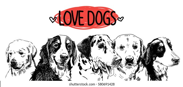 Love the dogs! Poster, postcard, print. Dogs of different breeds. freehand drawing in vintage style.