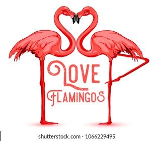Love Flamingos. Hand drawn vector illustration of two flamingos kissing with necks in the shape of a heart.