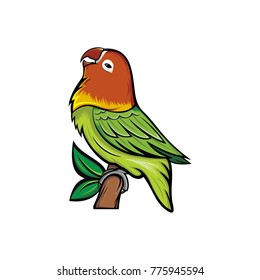 lovebird vector design template