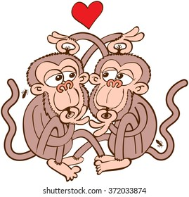 Lovely couple of brown monkeys dating in a romantic encounter, having fun and tenderly feeling in love while looking for lice in each other's head and eating them