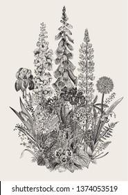 Lovely Garden. Flowerbed. Vintage illustration. Spring and summer garden flowers. Black and white
