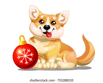 The lovely puppy Welsh Corgi sits and red sphere. A yellow dog a symbol 2018 new years according to the Chinese calendar. A cartoon vector illustration is isolated on white.