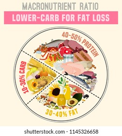 Low carbohydrate diet diagram. Macronutrient ratio poster. Fat loss concept. Colourful vector illustration isolated on a light beige background. Healthy eating concept.