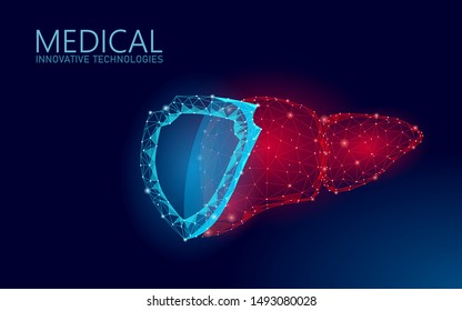 Low poly 3D human liver shield protect. Medicine recovery technology drug medicine concept. Vector illustration