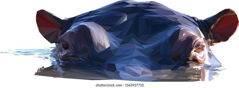 Low poly illustration of an African Hippo isolated