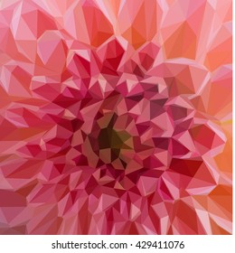 Low poly illustration Macro background of fresh Pink dahlia flowers