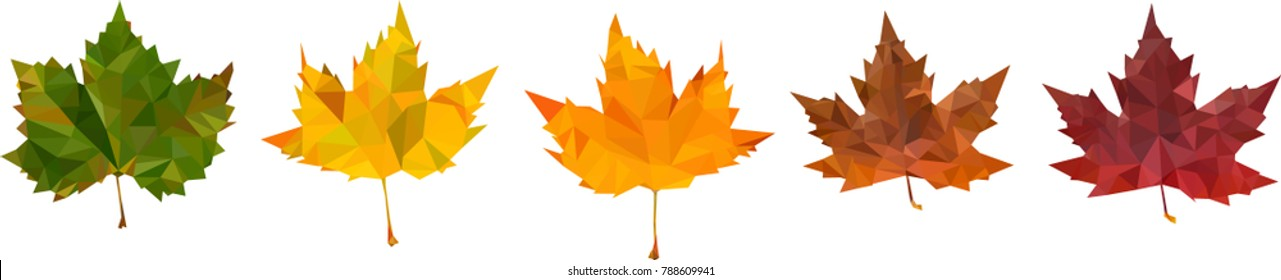 Low poly leaves, Art of autumn, Low poly fall, the passage of time, vectorgraphics