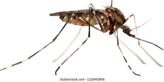 Low poly mosquito, Midge from triangles, Vector graphics