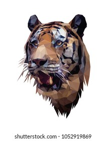 Low poly portrait of tiger. Tiger's head. Vector and illustration