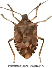 Low poly stink bug, Stink bug from triangles, Vector graphics, Polynomial stink bug