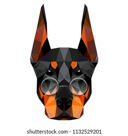 Low poly triangular dog doberman face spectacled on white background, symmetrical vector illustration EPS 10 isolated.  Polygonal style trendy modern logo design. Suitable for printing on a t-shirt.