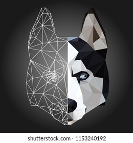 Low poly triangular and wireframe husky dog face on dark background, symmetrical vector illustration EPS 10 isolated.  Polygonal style trendy modern logo design. Suitable for printing on a t-shirt.
