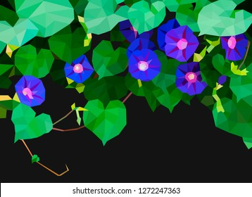 Low-poly Morning glory (ipomoea) bindweed on black background. Blue flowers and foliage. Vector illustration