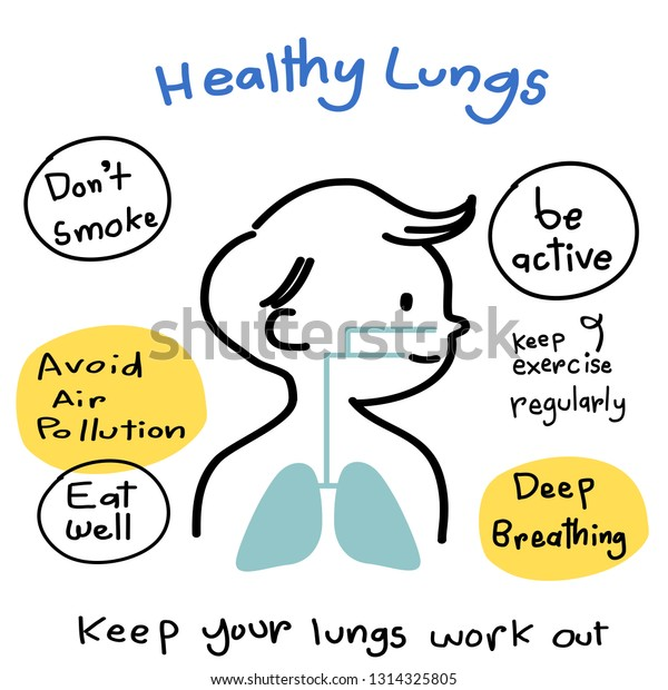 Lungs Diagram Howto Keep Lungs Healthy Stock Vector Royalty