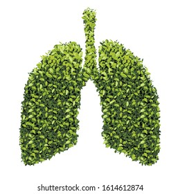 Lungs with Green leaf. Gray outline vector Medical flat illustration. Health care. Tree branches like the lungs with leaves.