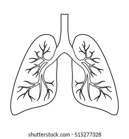 Lungs icon in outline style isolated on white background. Organs symbol stock vector illustration.