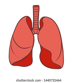 Lungs icon. Vector human lungs flat design. illustration. Vector