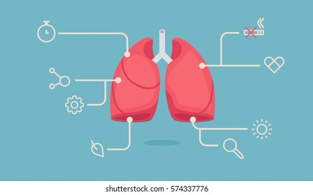 lungs infographic vector illustration