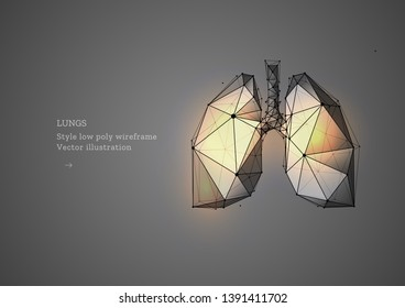 Lungs. Polygonal wireframe composition. Banner concept, the treatment of of lung diseases. Abstract illustration isolated on gray background.  Particles are connected in a geometric silhouette.