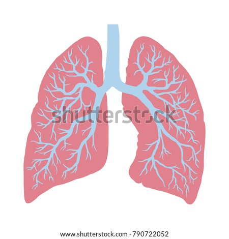Lungs Symbol Breathing Lunge Exercise Lung Stock Vektorgrafik